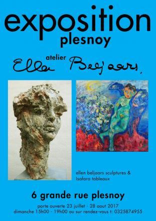 2017 Atelier Expositie Plesnoy